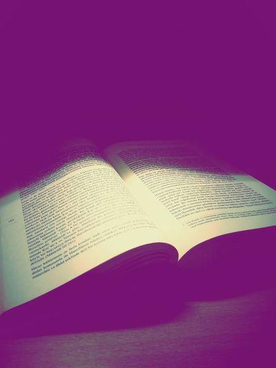 Book Kitap My Book