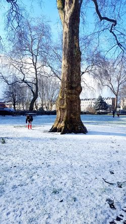 Snow in the park Cute Littlegirl Kids Kidsphotography Blue Cold Winter Winter Morning London Simple Photography Snow Park Tree Trunk Snow Covered Snow Ball White Day Kid Playing White Snow Tree Nature Snow Cold Temperature Winter Tree Trunk Day Tranquility Scenics Beauty In Nature Bare Tree Colour Your Horizn