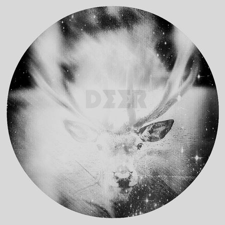 Black & White Forest Geometric Abstraction Deer
