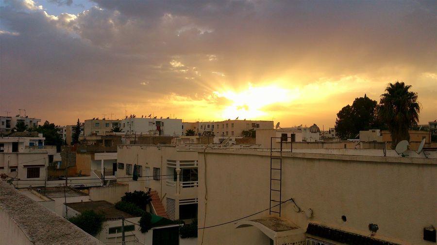 Tunis Khaznadar