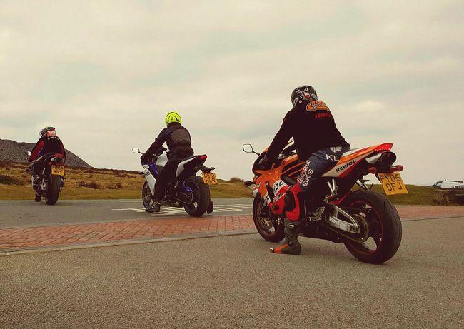 Motorcycles Suzuki Kawasaki Honda Motorbike I Love Motorcycles