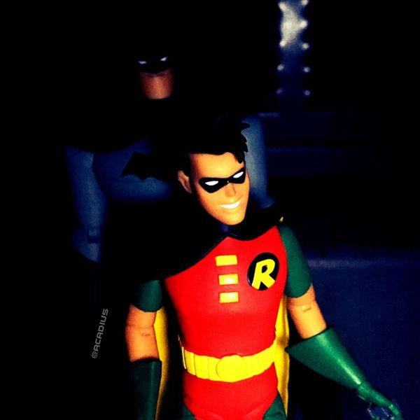 Mentor. Toys Toy Geek Toy Art Geek Batman Robin BTAS DC Comics ACBA