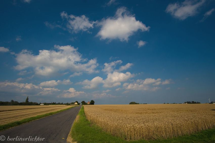 EyeEm Selects Field Landscape Sky Cloud - Sky Nature Beauty In Nature Dänemark Denmark Visitdenmark Sony Samyang Summer Summertime First Eyeem Photo
