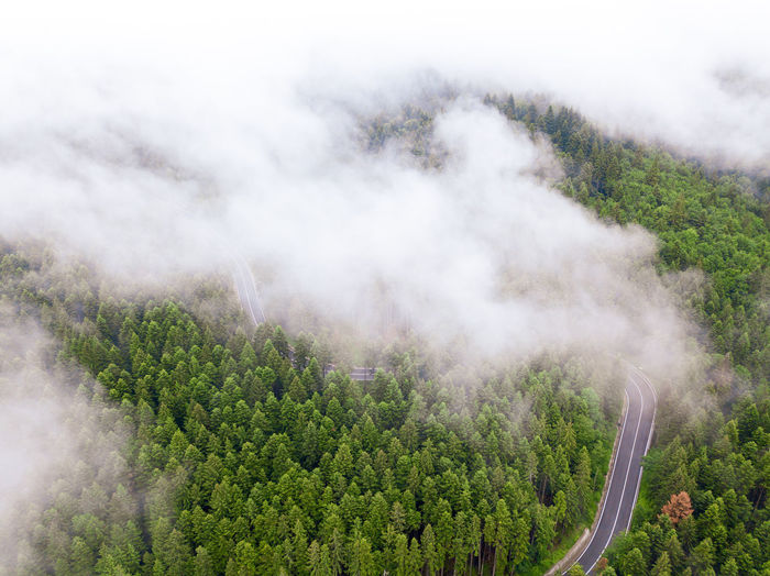 High angle view of trees on land against sky