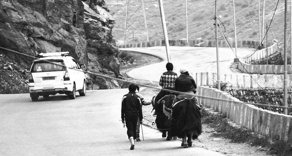 Outdoors People SonyAlpha6000 The Places I've Been Today Blackandwhite Street Photography The Week Of Eyeem The Week On Eyem Sony A6000 Transportation India Travel Week On Eyeem Himalayas, India India. Travelphotography Yak Ride