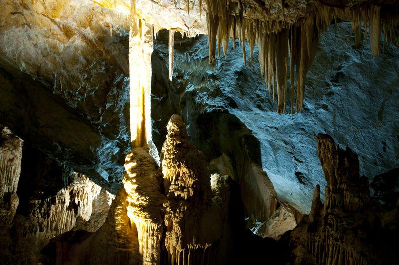 Lucas Cave Australia Lucas Cave Stalactite  Cave Jenolan Caves