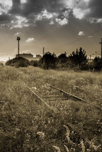 Abandoned Agricultural Building Agriculture Architecture Building Exterior Built Structure Day Desaturated Edited My Way Grownover Industrial Industrial Landscapes Nature No People Outdoors Postapocalyptic Railway Tree Yellow Grass