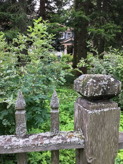 Stone structure against trees
