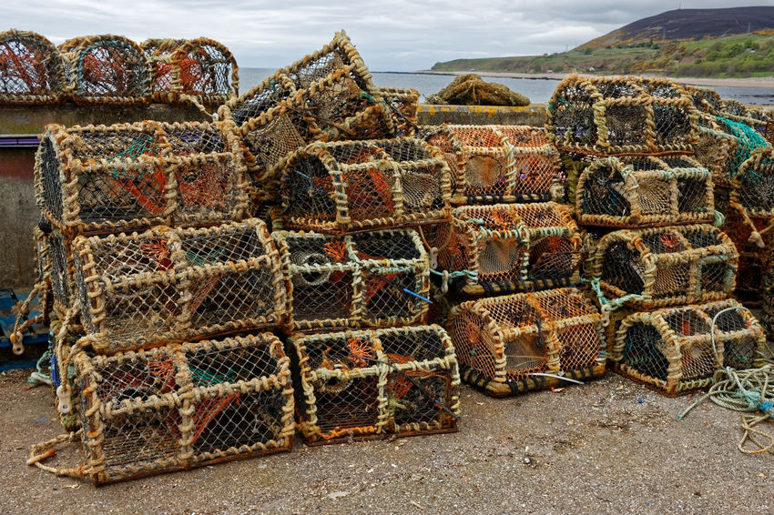 Lobster Pots, Helmsdale Harbour, Scotland E.U. Fishing Helmsdale Harbour, Scotland Lobster Scotland Abundance Architecture Beach Container Day Environment Fishing Fishing Industry Highlands Of Scotland Land Large Group Of Objects Lobster Pots Metal Nature Rusty Sea Sky Stack Tourism Travel Destinations Vivid International
