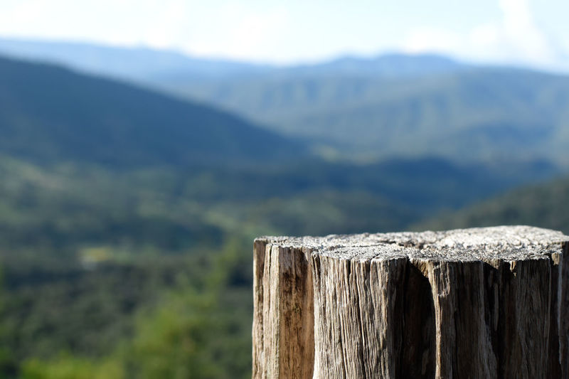 Close-up of wooden post on fence
