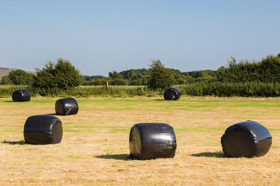 Hay Bales in the Countryside Agriculture Bale  Beauty In Nature Clear Sky Day Field Grass Hay Hay Bale Landscape Nature No People Outdoors Protection Sky Tree Weatherproof