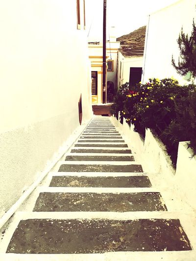Greek Islands Steps Architecture Steps And Staircases Built Structure Outdoors Building Exterior Greece Cythera Kythera Tourism Tourist Destination Strolling Relaxing Island Life Future Life