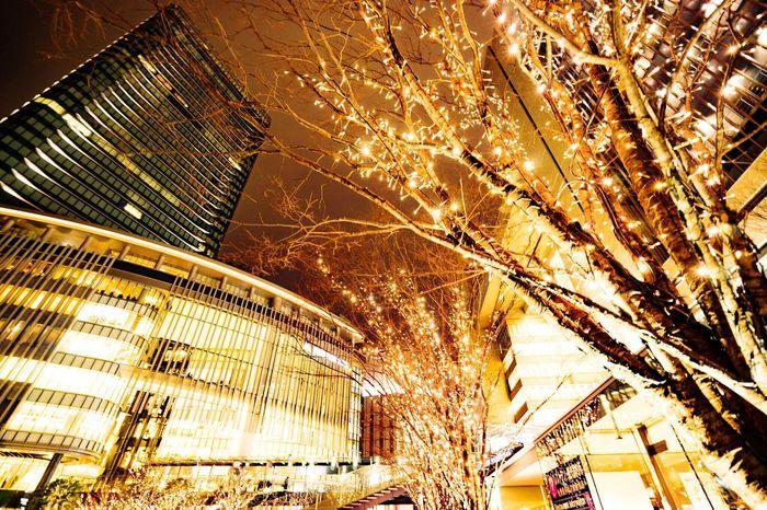 Osaka,Japan OSAKA Grand Front Osaka Osaka Station Lightup Sony A7 Enjoying Life