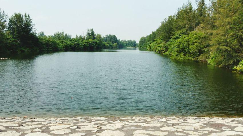 Follow the river. Amfotografi Samsung Galaxy Note 4 River Nature Nature Photography SubhanAllah