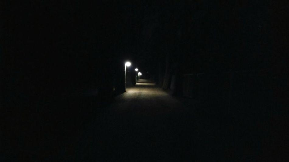 The Way Ahead. · Hamburg Germany 040 Hh Barmbek Stadtpark Park Route Path Lamp Posts Lights City Lights Night Lights At Night Night Photography
