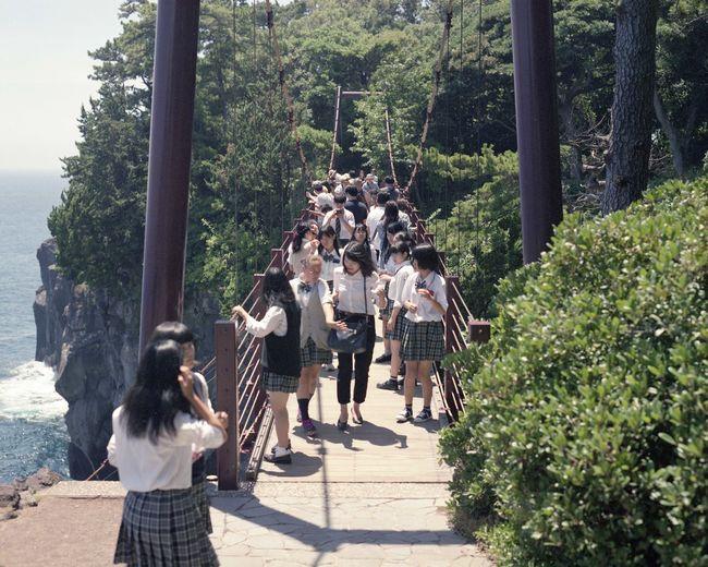 EyeEm EyeEm Nature Lover EyeEm Gallery Film Japan PENTAX67 Student Uniform Bridge Enjoying Life Film Photography Filmisnotdead Fujifilm Nature Outdoors Pentax Young Women Been There.