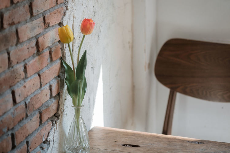 Close-up of white vase against wall
