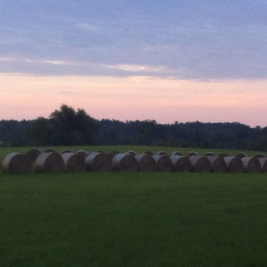 Hay bales reporting for duty. Oklahoma Haybales  Sunrise Straightlines Formation Summer Reveille