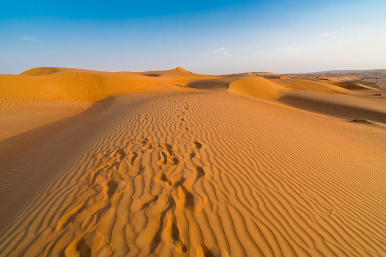 Sand dunes with footprints in them under the blue sky with soft haze on the distant horizon.