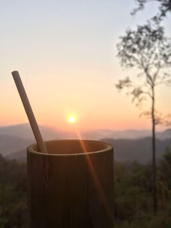 Nature Sunshine Sunlight Beautiful Day Coffee Time Thailand Thailand_allshots