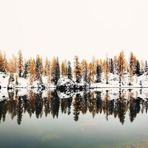 ]winter vision[ Crodadalago Mycortina