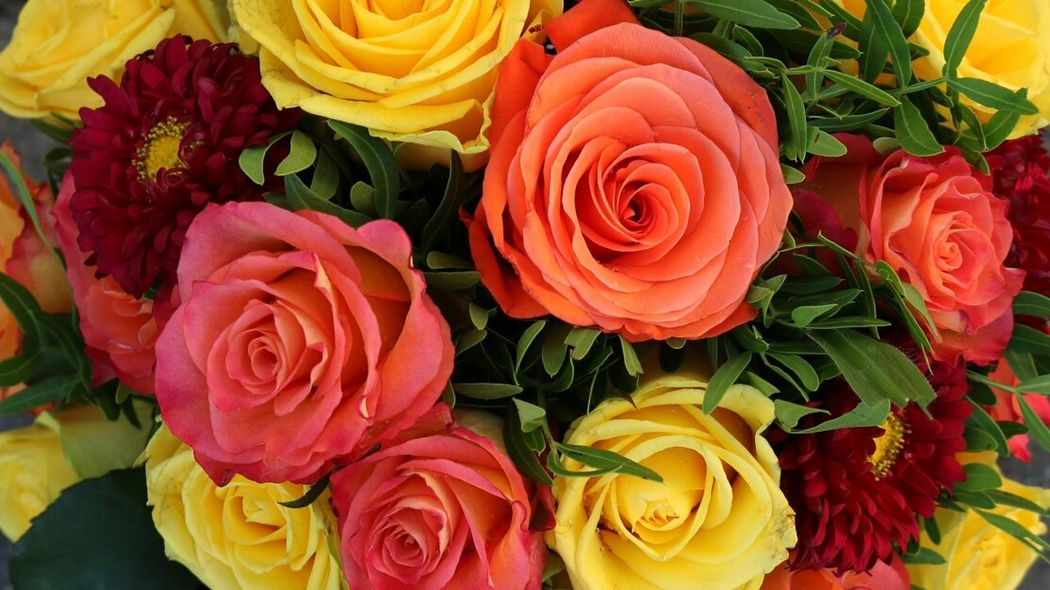 Colourful..... Roses Flower Rose Collection Bouquet Autumcolours Red Orange Yellow Close-up Colorful Flower Arrangement Multi Colored Photoshoot Photoart September 2016 Picoftheday Photooftheday Flowers, Nature And Beauty Student