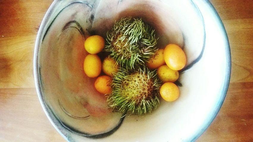 the kumquats have been invaded Kumquats Fruit Bowl Pottery Mystery Make Love Not War Yum