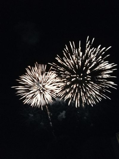 Celebration Event Firework Arts Culture And Entertainment Night Motion Exploding Firework Display No People Illuminated Sky Copy Space Outdoors Low Angle View Nature Black Color Firework - Man Made Object Entertainment Event