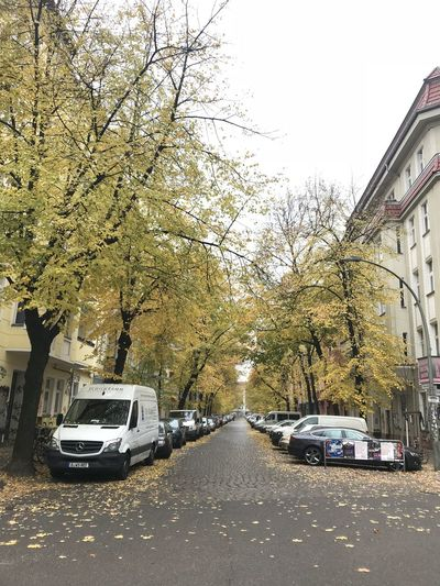 Nur In Berlin