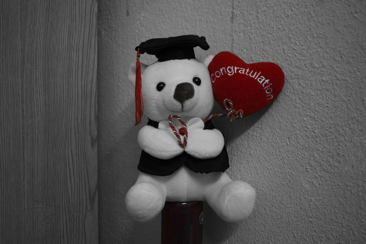My first bear from parents! Congratulations Cuteness First Love Room Convocation Cute No People Red Small Bear Smile Teddy Bear