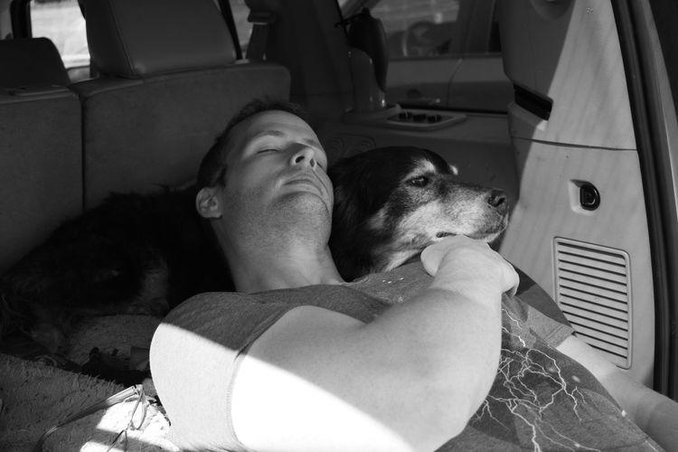 Man With Dog Sleeping In Caravan