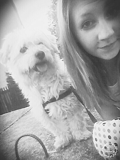 Dog Love Taking Photos Selfie✌ Hair Break Heart Lovely :)