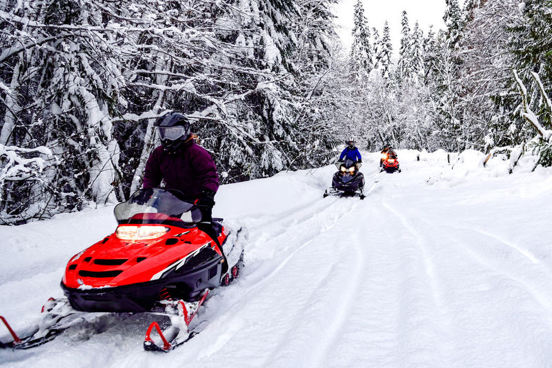 Red Snowmobiles #tracks #familyfun #love #snow #sun Outdoor Recreation Winter Snow