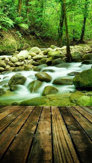 Water Nature Beauty In Nature No People Tranquility Day Outdoors Wood - Material Tranquil Scene Motion Lake Scenics Long Exposure Waterfall Tree Forest Freshness
