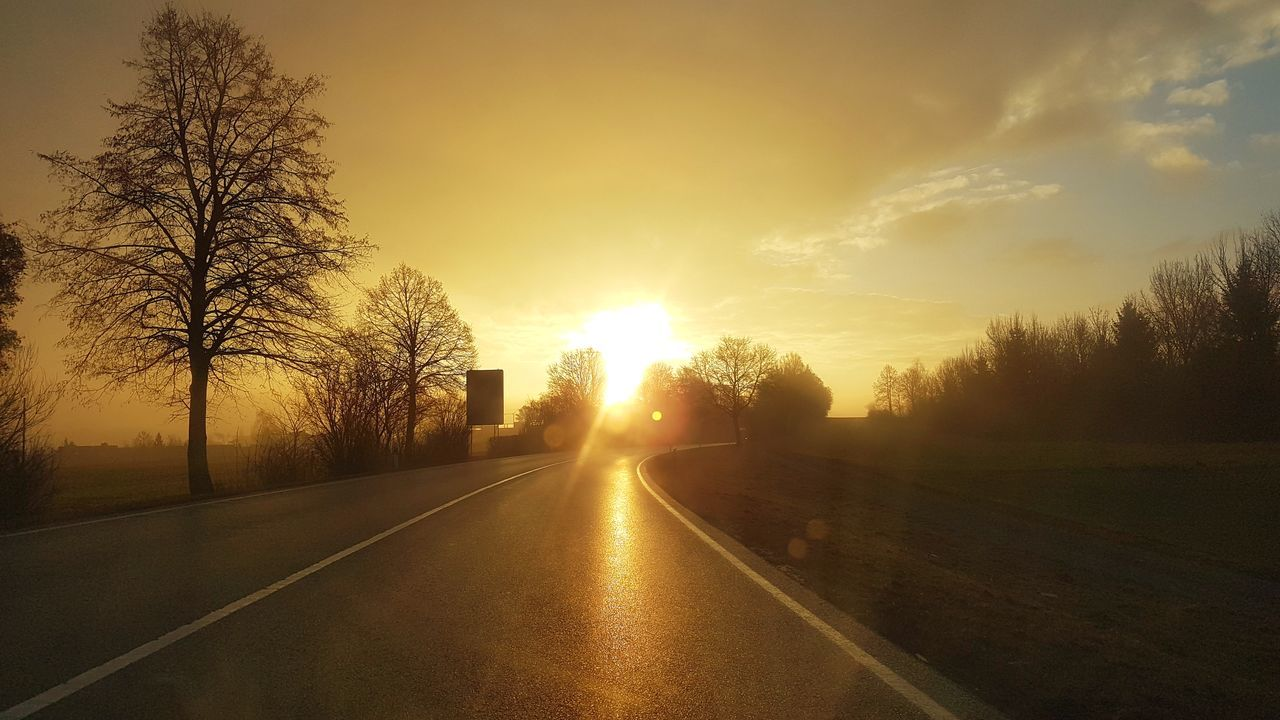 sunset, road, tree, the way forward, transportation, sky, sun, no people, nature, outdoors, scenics, landscape, beauty in nature, day