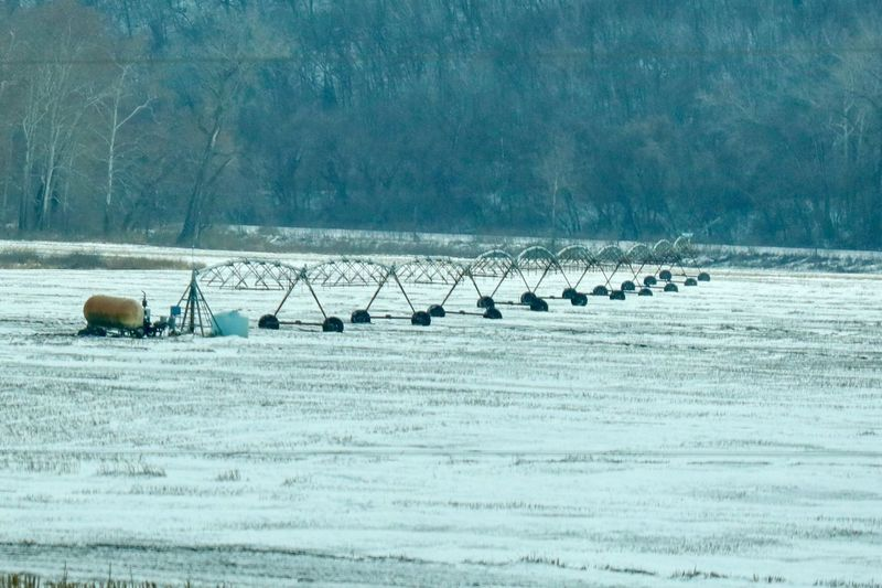 Irrigation system in fallow, snow covered field Irrigation Equipment Snow Winter Cold Temperature Field Environment Land Scenics - Nature Beauty In Nature Nature Landscape No People Tranquil Scene Day Agriculture Frozen Tree Non-urban Scene Outdoors