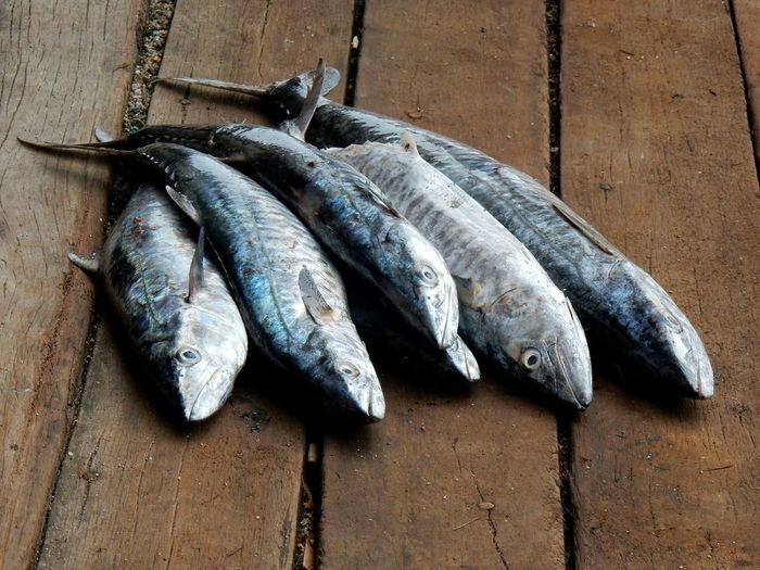 High angle view of fish on wooden table for sale in market