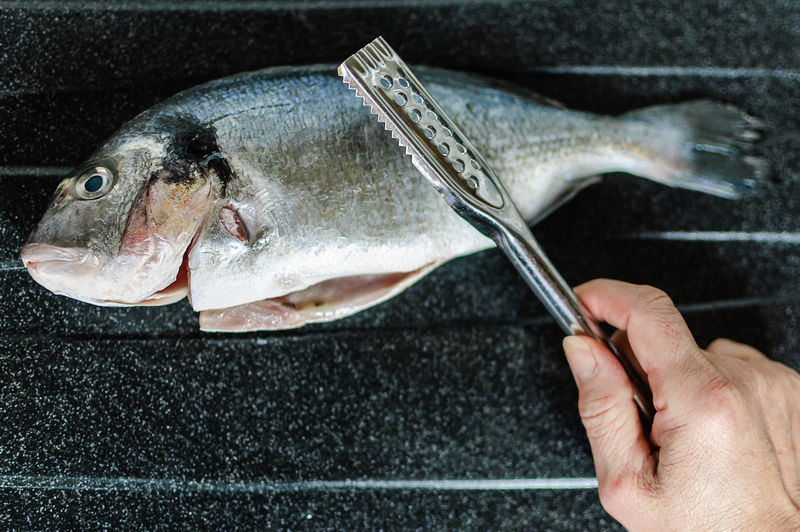 Close-Up Of Hand Preparing Fish