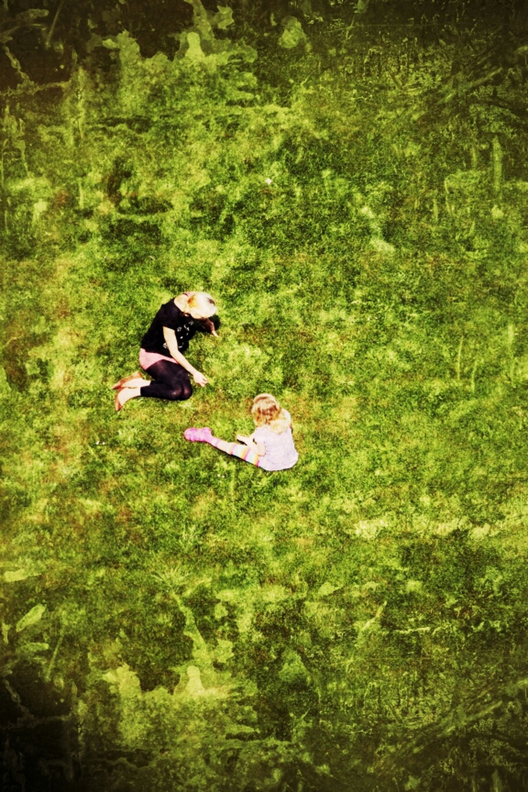 green color, grass, lifestyles, leisure activity, high angle view, men, growth, nature, full length, field, tree, tranquility, day, plant, outdoors, beauty in nature, person, grassy