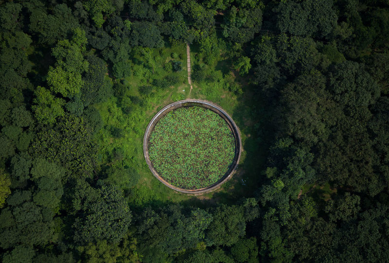 The Ring Forest Bangladesh Aerial View Drone  From My Point Of View Top View Ring Birds Eye View Pond What Goes Around Comes Around  Popular Photos Popular Aerial View Beauty In Nature Circle Green Color Growth High Angle View Landscape Nature No People Outdoors Scenics - Nature Shape Tranquil Scene Green Circular Greenery Grassland Farmland Summer Exploratorium Adventures In The City Focus On The Story The Great Outdoors - 2018 EyeEm Awards The Architect - 2018 EyeEm Awards 10