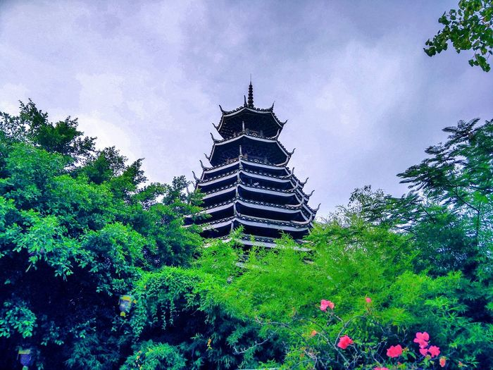 Architecture Low Angle View Built Structure Building Exterior Green Color No People Architectural Feature Outdoors Tower Buildings Tower From My Point Of View EyeEm EyeEm Gallery Taking Photos Hi! Garden