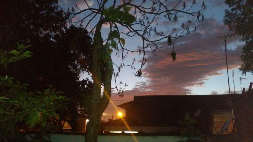 Showcase: January early morningAt My House <3