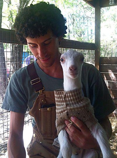 Serenitygoats Goatfarm Goat Life Goat Baby Goats Serenitygoats