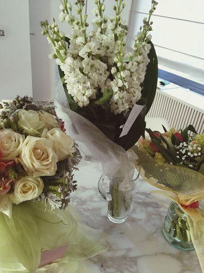 Flowers Birthday 🌸
