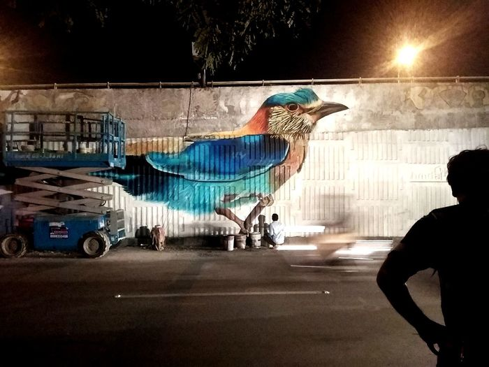Graffiti Hyderabad India streetphotography Outdoors Bird Colors Colorful Flyover Street EyeEmNewHere Mobility In Mega Cities Colour Your Horizn