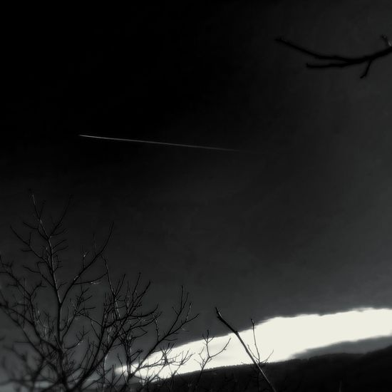 Winter Black And White Clearsky Plane Trail Black Sky Nature Bare Tree Scenics Beauty In Nature Contrail Tranquility Outdoors