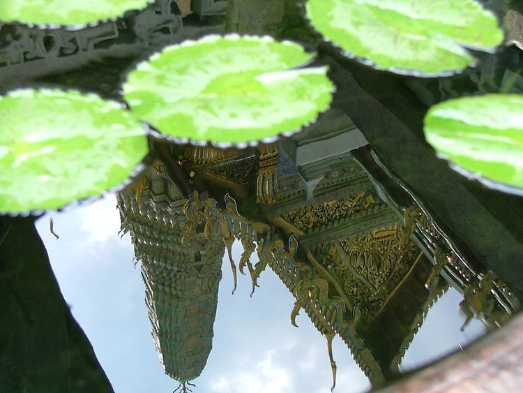 Built Structure Close-up Day Green Color Growth Leaf Lily Pond No People Outdoors Plant Pond. Reflection. Sky Standing Water Temple Building. Tranquility Water