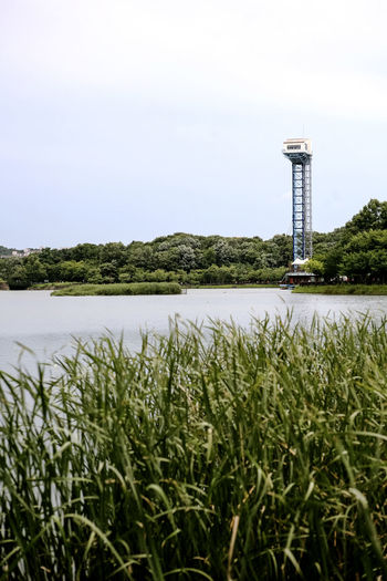 Beauty In Nature Built Structure Bundang Clear Sky Copy Space Day Field Grass Green Color Growth Jump Lake Landscape Nature Park Plant River Scenics Sky Tranquil Scene Tranquility Tree Water Yuldong Pak