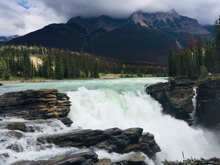 Athabaska falls Scenics - Nature Water Beauty In Nature Cloud - Sky Mountain Sky Tree Nature Motion Non-urban Scene Mountain Range Environment Power In Nature Tranquil Scene Idyllic Plant Power Day Tranquility