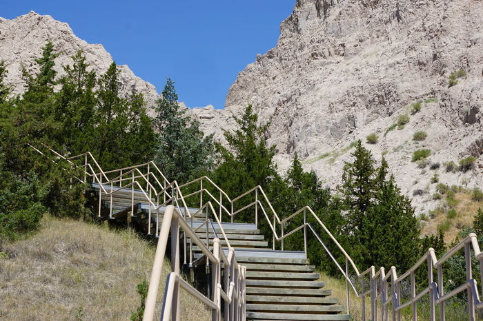 Badlands National Park Trees Clear Sky Day Hand Rail Mountain Nature No People Outdoors Railing Sky Staircase Stairs Stairs In Nature Steps Steps And Staircases Tree
